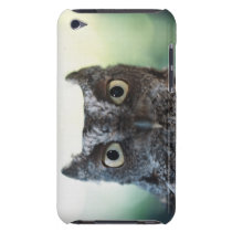 Eastern Screech Owl Portrait Showing Large Eyes Barely There iPod Case