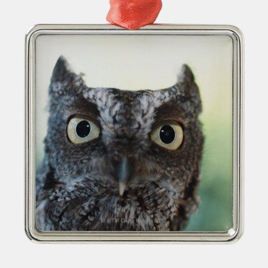 Eastern Screech Owl Portrait Showing Large Eyes Metal Ornament
