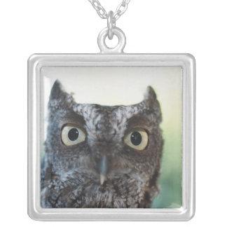 Eastern Screech Owl Portrait Showing Large Eyes Square Pendant Necklace