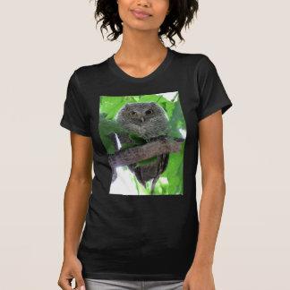 Eastern Screech Owl Shirt
