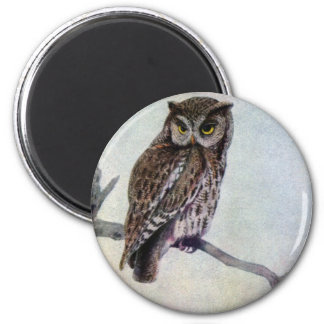 Eastern Screech Owls 2 Inch Round Magnet