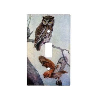 Eastern Screech Owls Light Switch Cover