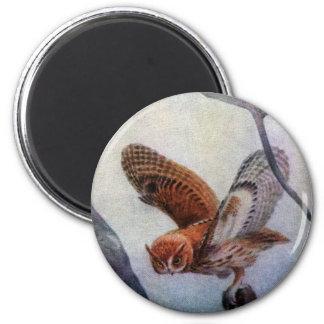Eastern Screech Owls Magnet