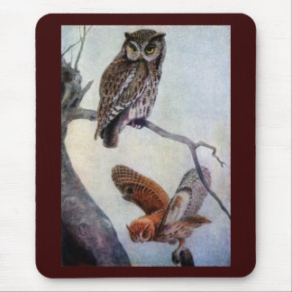 Eastern Screech Owls Mouse Pad