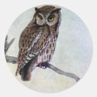 Eastern Screech Owls Stickers