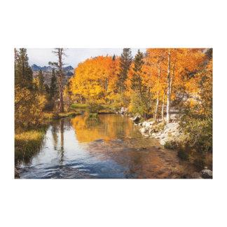 Eastern Sierra, Bishop Creek, California Outlet Canvas Print