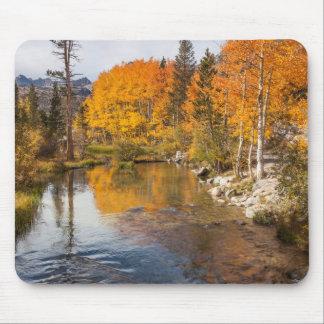 Eastern Sierra, Bishop Creek, California Outlet Mouse Pad