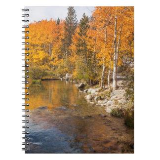 Eastern Sierra, Bishop Creek, California Outlet Notebook