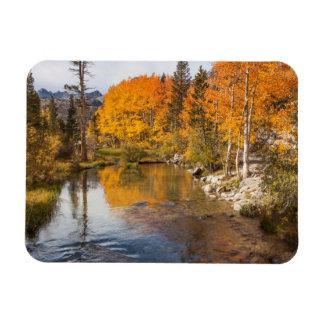 Eastern Sierra, Bishop Creek, California Outlet Rectangular Photo Magnet