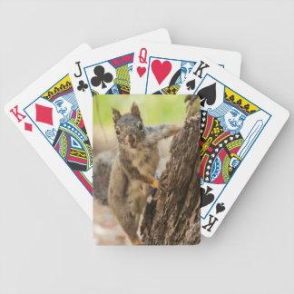 Eastern Sierra Nevada Bicycle Playing Cards
