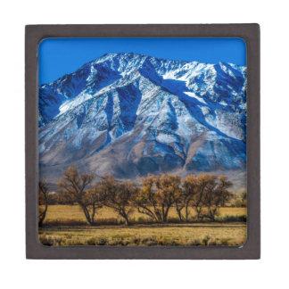 Eastern Sierra Nevada Fall - Bishop - Californa Gift Box