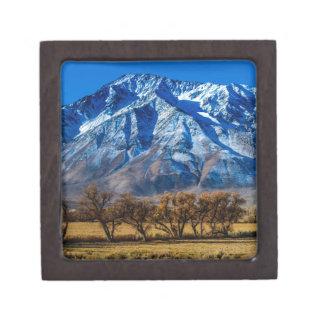 Eastern Sierra Nevada Fall - Bishop - Californa Jewelry Box