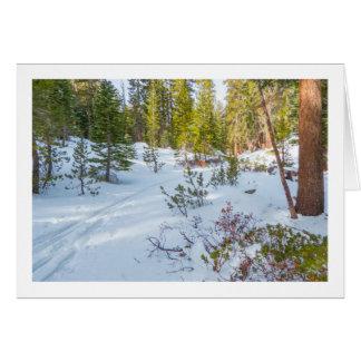 Eastern Sierra Snapshots Note Cards