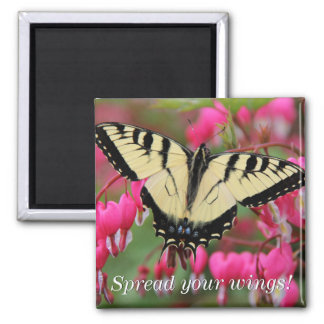 Eastern Swallowtail 2 Magnet