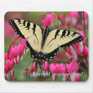 Eastern Swallowtail 2 Mouse Pad