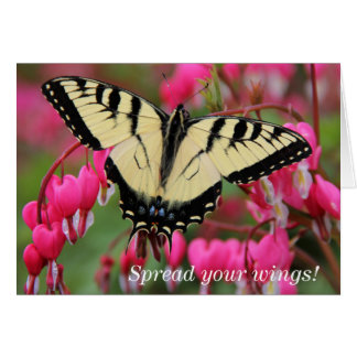 Eastern Swallowtail Card