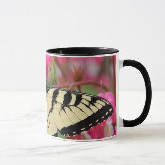 Eastern Swallowtail Mug