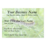 Eastern Tent Caterpillar Large Business Cards (Pack Of 100)