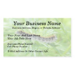 Eastern Tent Caterpillar Double-Sided Standard Business Cards (Pack Of 100)