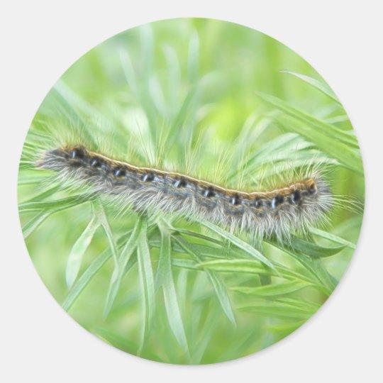 Eastern Tent Caterpillar Classic Round Sticker