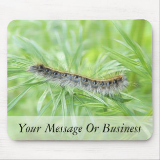 Eastern Tent Caterpillar Mouse Pad