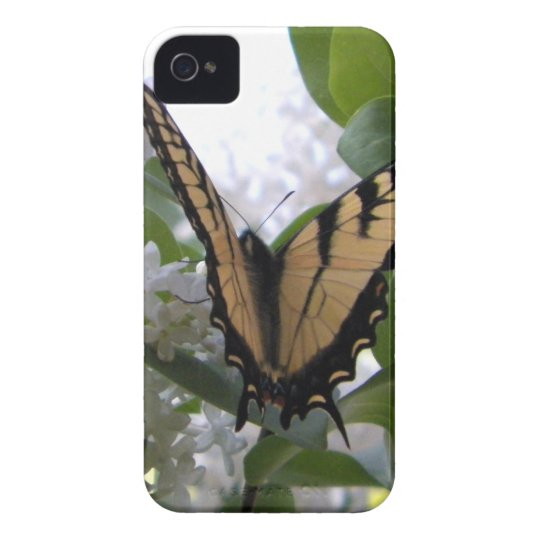 Eastern Tiger Swallow Tail on White Lilac Bush Case-Mate iPhone 4 Case