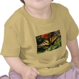 Eastern Tiger Swallowtail Butterfly Baby T-Shirt