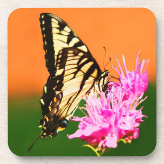 Eastern Tiger Swallowtail Butterfly Beverage Coaster