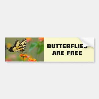 Eastern Tiger Swallowtail Butterfly Car Bumper Sticker