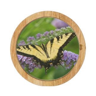 Eastern Tiger Swallowtail butterfly Cheese Platter