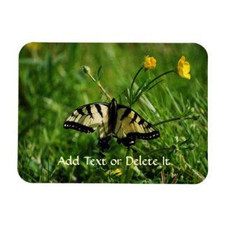 Eastern Tiger Swallowtail Butterfly flex magnet