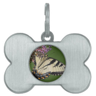 Eastern Tiger Swallowtail Butterfly Gifts Pet Name Tag
