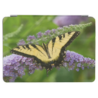 Eastern Tiger Swallowtail butterfly iPad Air Cover