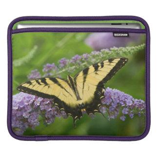 Eastern Tiger Swallowtail butterfly iPad Sleeve