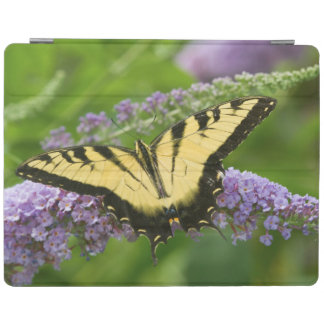 Eastern Tiger Swallowtail butterfly iPad Smart Cover