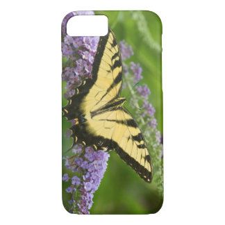 Eastern Tiger Swallowtail butterfly iPhone 8/7 Case