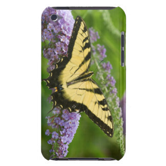 Eastern Tiger Swallowtail butterfly iPod Touch Cover