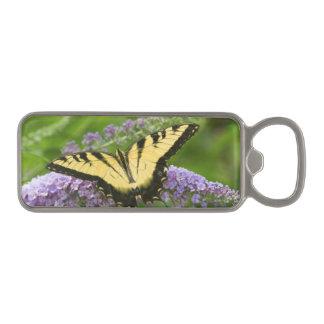 Eastern Tiger Swallowtail butterfly Magnetic Bottle Opener