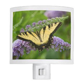Eastern Tiger Swallowtail butterfly Night Light