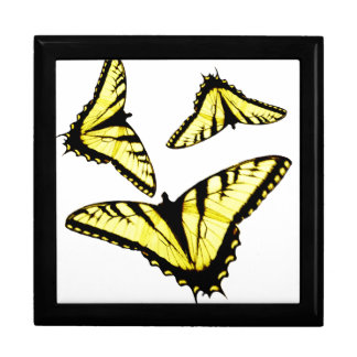 Eastern Tiger Swallowtail Butterfly Photo Box
