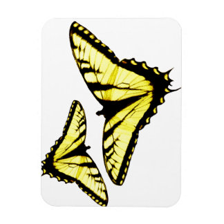 Eastern Tiger Swallowtail Butterfly Photo Magnet