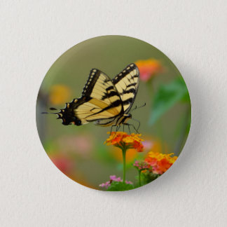 Eastern Tiger Swallowtail Butterfly Pinback Button