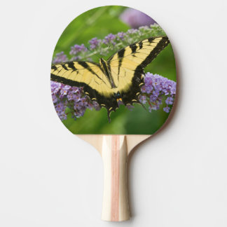 Eastern Tiger Swallowtail butterfly Ping-Pong Paddle
