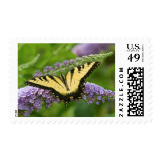 Eastern Tiger Swallowtail butterfly Stamps