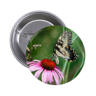 Eastern Tiger Swallowtail Pinback Buttons