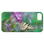 Eastern Tiger Swallowtail on Fresia - Sammamish iPhone 5 Case