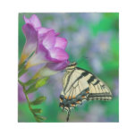 Eastern Tiger Swallowtail on Fresia - Sammamish Memo Pad