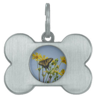 Eastern Tiger Swallowtail on Yellow Daisies Pet Tag
