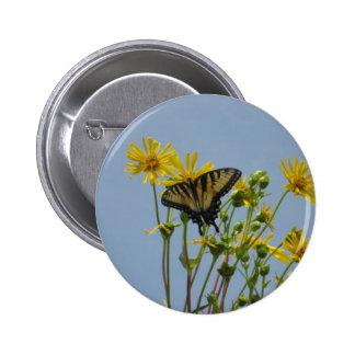 Eastern Tiger Swallowtail on Yellow Daisies Pinback Button