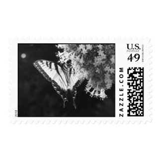 Eastern Tiger Swallowtail Postage Stamps